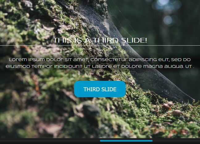 https://www.jqueryscript.net/slider/Responsive-Dynamic-Content-Slider-jQuery.html