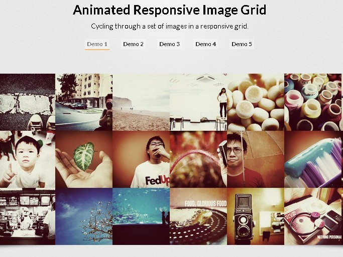 Animated Responsive Image Grid Plugin