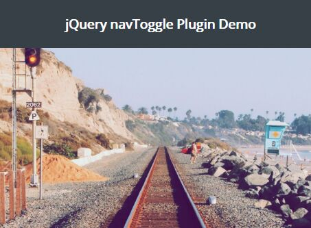 Auto Show / Hide Elements On Scroll Using jQuery - navToggle