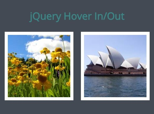 Basic Image Rollover Effect with jQuery and HTML5 - Hover In / Out