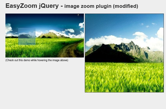 Basic and lightweight jQuery Image Zoom Plugin - Easy Zoom