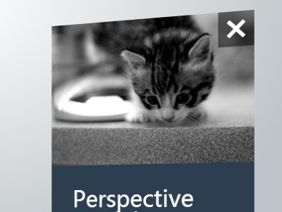 Create A 3D Pe<font color='red'><font color='red'>rspective</font></font> Modal Window with jQuery and CSS3