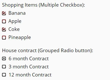 how to create custom radio button in html