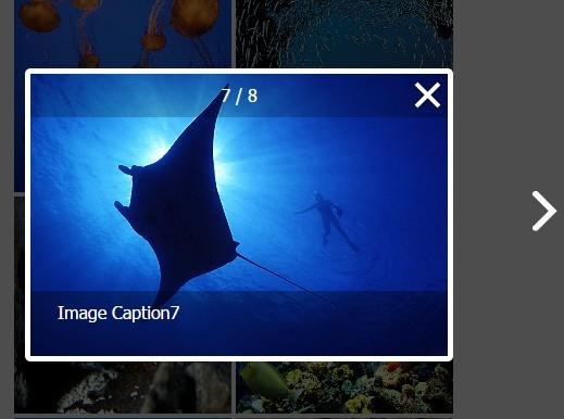 Easy Responsive Photo Lightbox Gallery Plugin - photoGallery