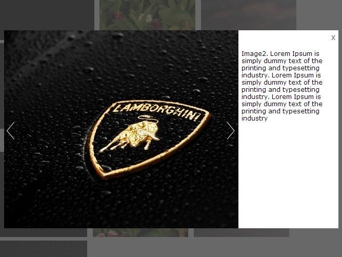 Facebook Like jQuery Image Gallery Lightbox Plugin - AM2 SimpleSlider