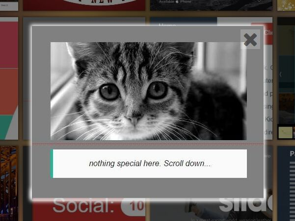 Facebook Photo Gallery Plugin With jQuery - fbGallery