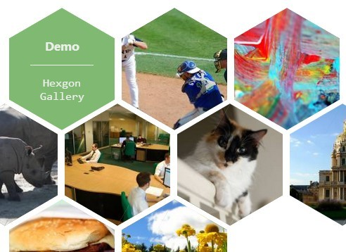 Fancy jQuery & CSS3 Based Hexagon Image Gallery