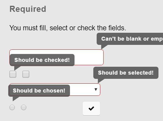 Flexible Full-featued Form Validation Plugin - jQuery Validaty