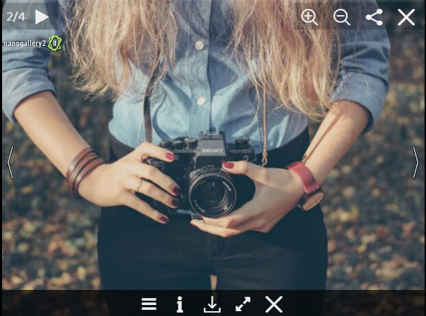 Full Featured Photo Gallery Plugin For jQuery - nanoGallery 2