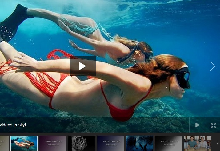 Fully Functional jQuery Image/Video Gallery Plugin - Unite Gallery