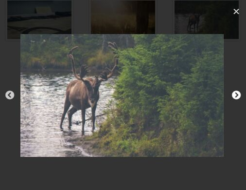 Responsive Gallery Lightbox With jQuery And Slick.js - slick-lightbox