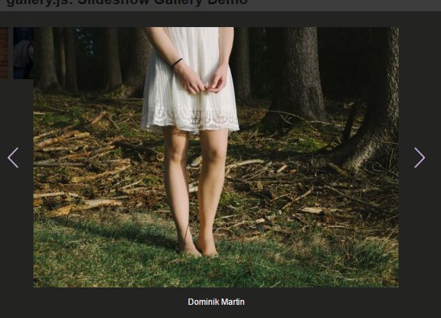 Handy Slideshow-style Image Gallery Plugin For jQuery - gallery.js