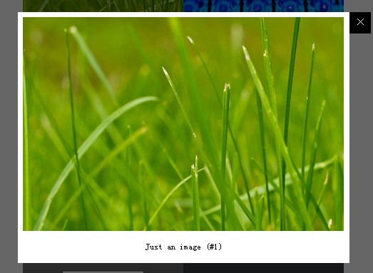 Highly Configurable & Responsive Content Lightbox Plugin For jQuery - poptrox