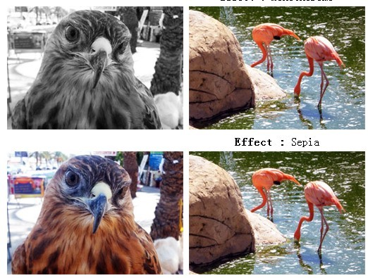 Image Color Up Plugin with jQuery