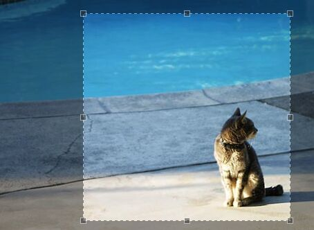 Feature-rich Image Cropping Library For jQuery - Jcrop