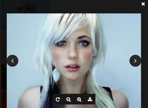 Flexible Image Lightbox & Gallery Plugin - jQuery oimage