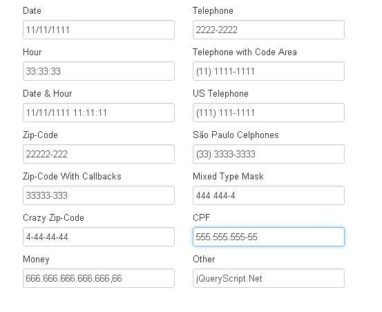 Input Field Data Formatting Plugin For jQuery - Mask
