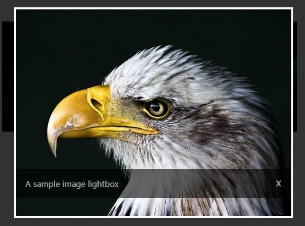 Minimal Responsive Image Lightbox Plugin with jQuery - n9xtbox