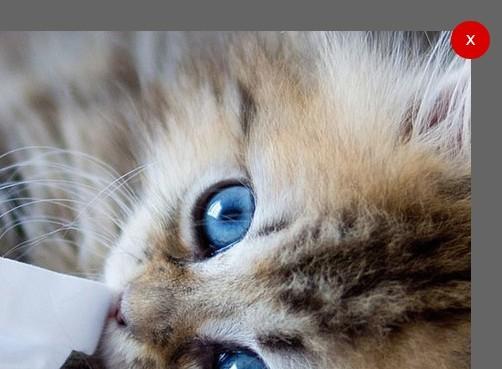 Minimalist Image Viewer/Lightbox Plugin with jQuery