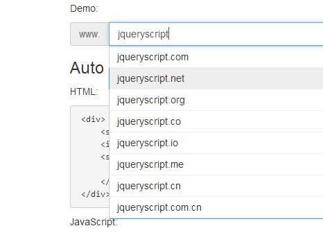 Multi-purpose jQuery Autocomplete & Autosuggest Plugin - Completer