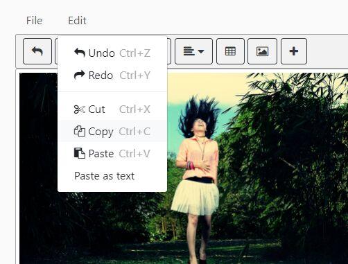 Basic Online WYSIWYG Editor With jQuery - TextEditor