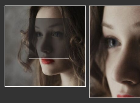 Performant Image Magnifying Glass Effect With jQuery - jZoom