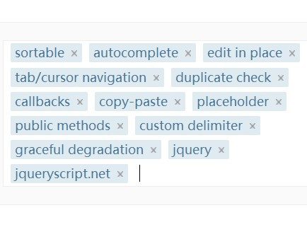 Powerful And Lightweight jQuery Tag Management Plugin - tagEditor
