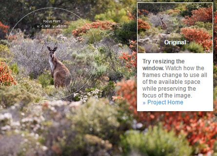 Smart Responsive Image Cropping/Resizing On Resize - jQuery FocusPoint