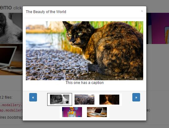 Responsive Lightbox Gallery Plugin With jQuery And Bootstrap - Modallery