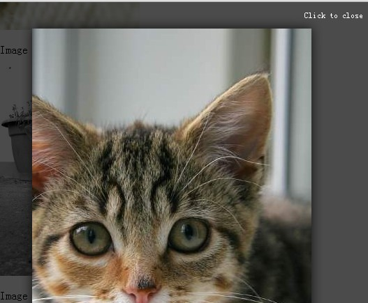 Simple HTML5 Lightbox Plugin with jQuery - h5-lightbox