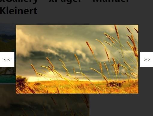 Simple Responsive Image Lightbox Gallery Plugin - xGallery