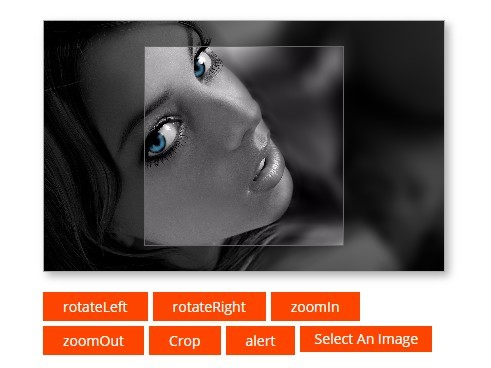 jQuery Image Cropping Plugins | jQuery Script