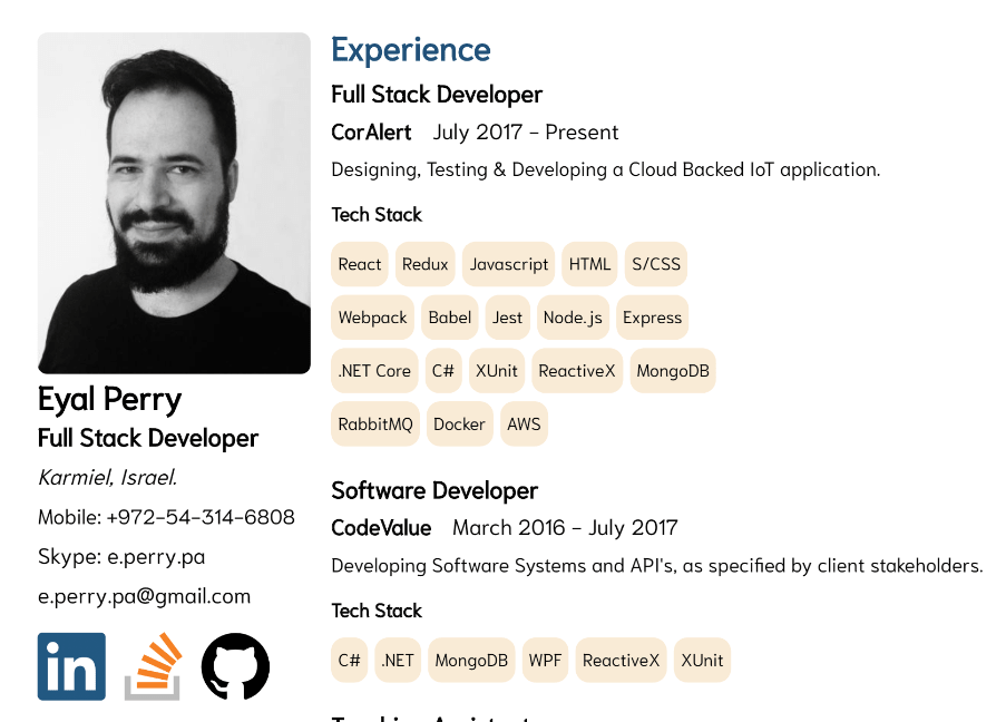 Developer CV Template