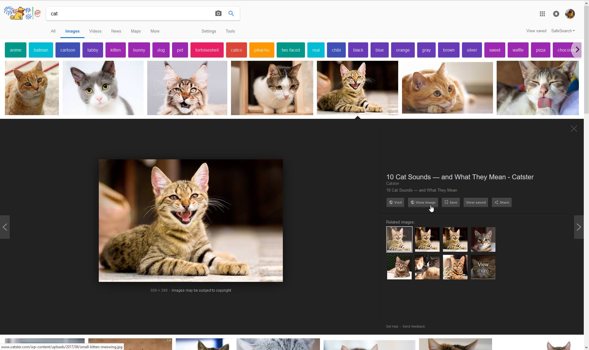 Make Google Image Search Great Again