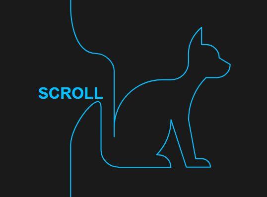 SVG Draw On Scroll