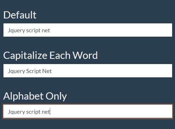 Automatically Format User Input With The Simple Input Plugin