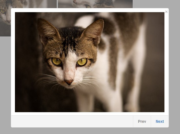 jQuery Image Gallery Lightbox Plugin - jQuery Impromptu Gallery