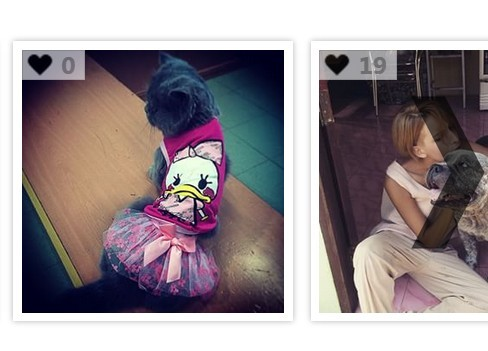 jQuery Plugin For Automatic Instagram Carousel - DidiZoo
