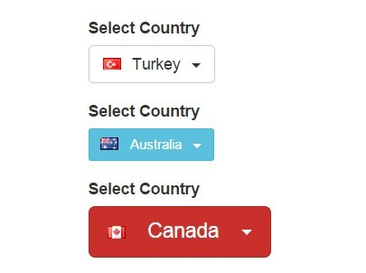 jQuery Plugin For Country Selecter with Flags - flagstrap