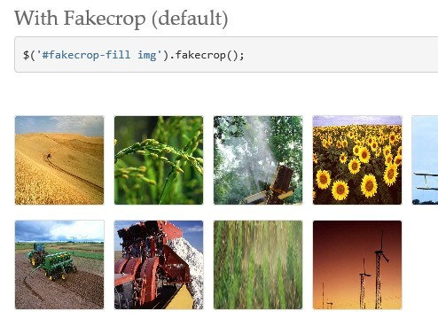 jQuery Plugin For Cropping Images - Fakecrop