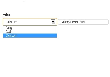 jQuery Plugin For Custom Select Dropdown List
