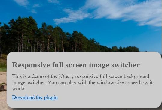 jQuery Plugin For Responsive Full Screen Image Slider - bgswitcher