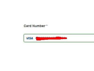 jQuery Plugin For User-Friendly Credit Card Input Field