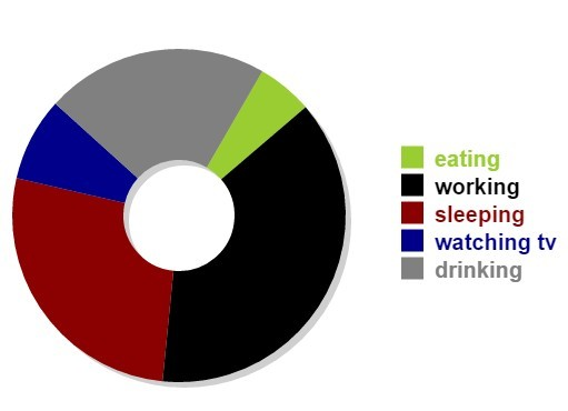 jQuery Plugin To Convert Tabular Data Into Donut Charts - Chart.js