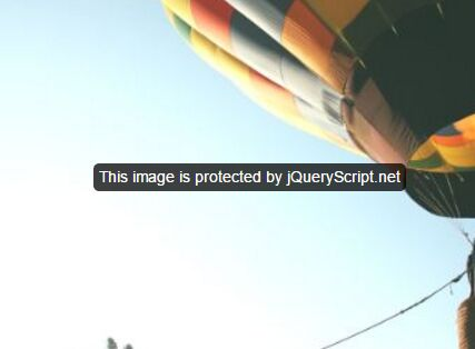 jQuery Plugin To Prevent Saving Images From Your Website - stopStealPhoto