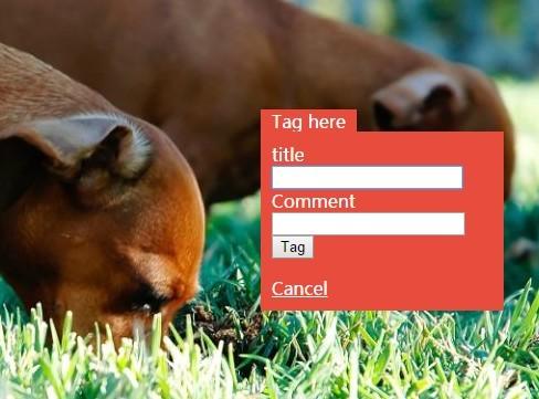 jQuery Plugin To Tag Photos & DIVs - Image Tag