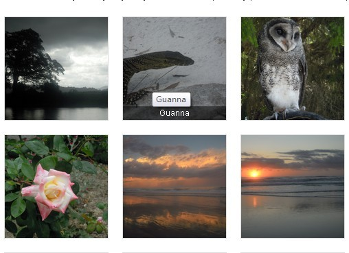 free jquery photo gallery with thumbnails