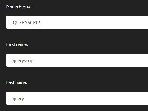 Auto Format Form Fields When Typing - jQuery Smart Formatter