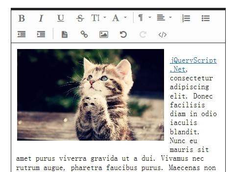 jQuery WYSIWYG Rich Text Editor Plugin - Froala Editor