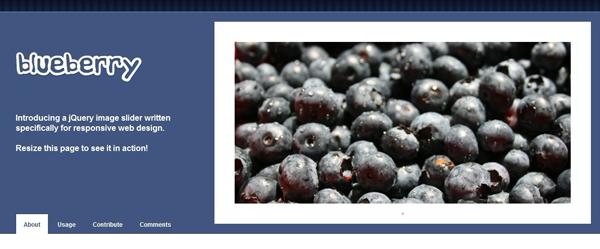 Blueberry Jquery Image Slider Plugin